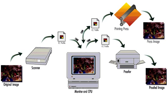 How do output devices work